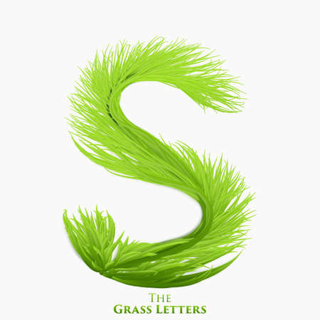 Vector letter S of juicy grass alphabet. Green S symbol consisting of growing grass. Realistic alphabet of organic plants. Spring and ecology typeset illustration Illustration