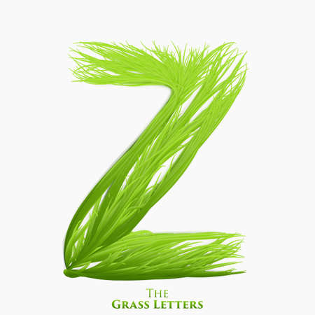 Vector letter Z of juicy grass alphabet. Green Z symbol consisting of growing grass. Realistic alphabet of organic plants. Spring and ecology typeset illustration