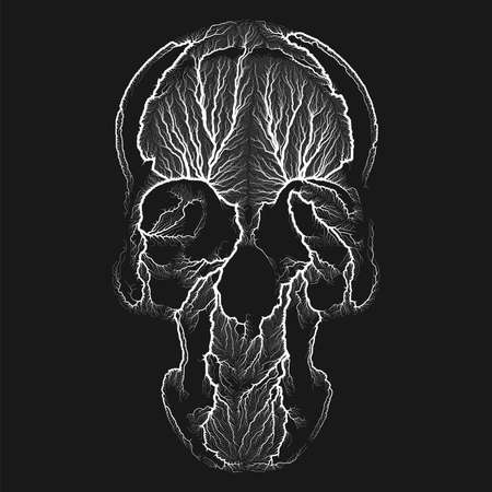 Generative vector black and white illustration of human skull. Procedural growth bone face concept