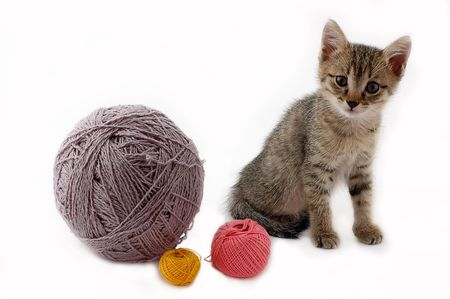 Kitten and balls of a wool on a white background Stock Photo