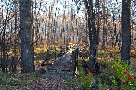 Le vieux pont de bois � l'automne laisse des couleurs dans l'avant-plan
