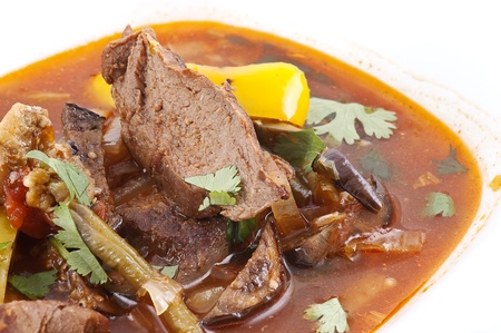 Meat with a broth and vegetables close up photo