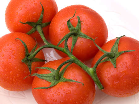 closely cropped: Five tomatoes with the vine stork attached and closely cropped.