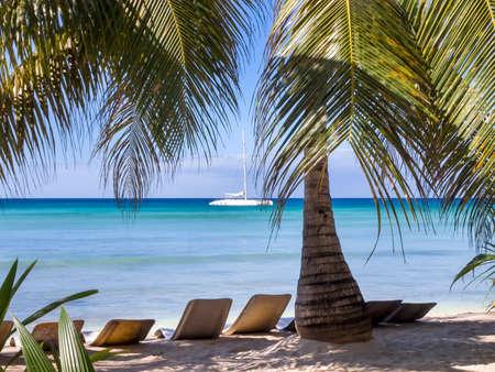 Chaises longues sur une plage des Caraïbes avec des palmiers et une mer d'un bleu profond. Banque d'images