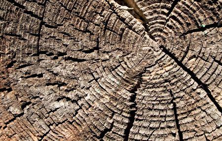 crazing: Wood Stock Photo