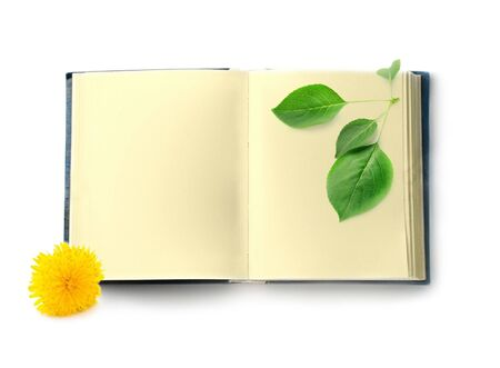 Book isolated on white background photo