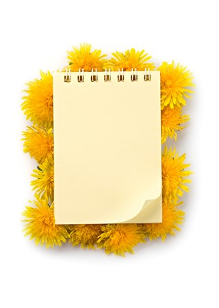 Notepad and flowers isolated on the white background photo