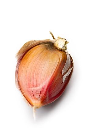 Garlic isolated on white photo
