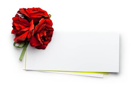 Card and roses isolated on white Stock Photo