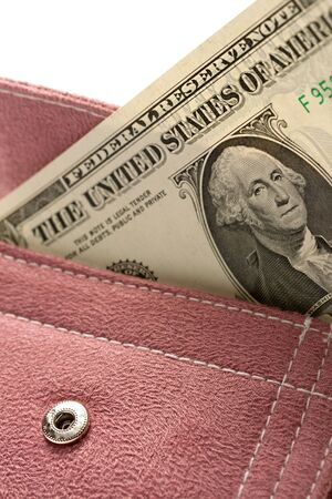 corduroy: Lilac corduroy purse with dollar