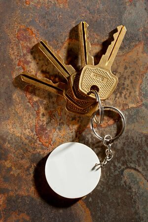 Keys with ring on the rusty background Stock Photo - 12752927