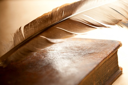 Feather and old book  photo