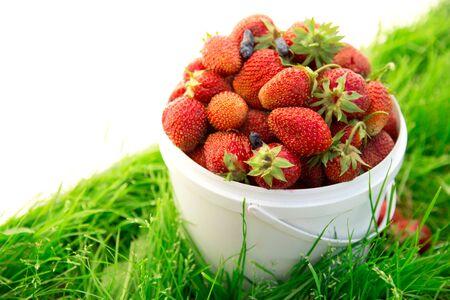 Ripe strawberry in bucket on grass photo