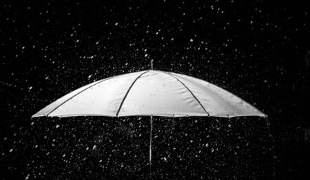 Umbrella under raindrops in black and white photo