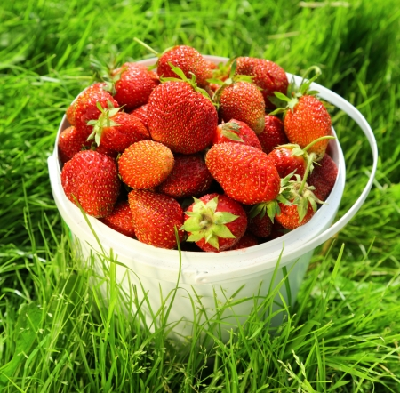 Ripe strawberry in basket on grass photo