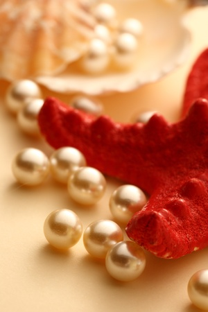 seastar: Scattering white pearls in seashell and seastar