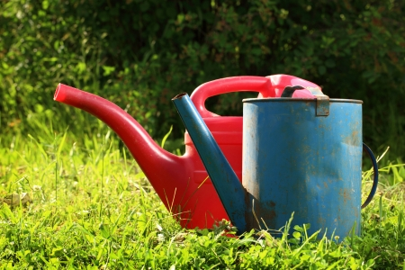 Old watering cans on grass photo