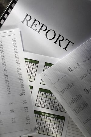 monthly salary: Operating budget, calendar and report