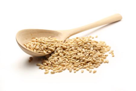 Pearl barley and wooden spoon Foto de archivo