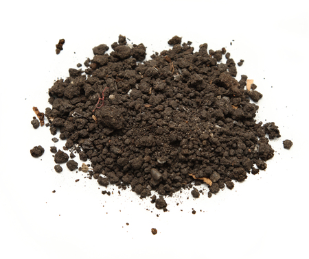 clod: Handful of soil on white Stock Photo