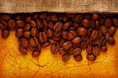 Brown coffee beans with sack photo