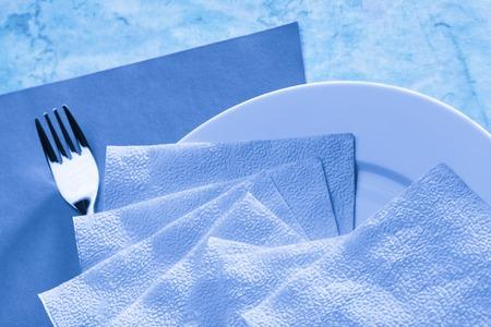 servilleta de papel: Plato, tenedor y servilleta en el tono Foto de archivo