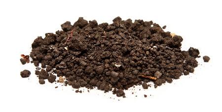 Handful of soil on white photo