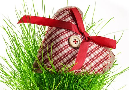 Valentine checked heart with button and ribbon on grass photo