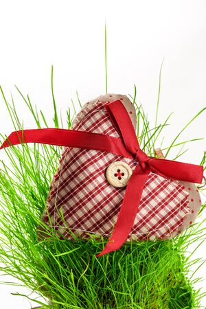 button grass: Valentine checked heart with button and ribbon on grass