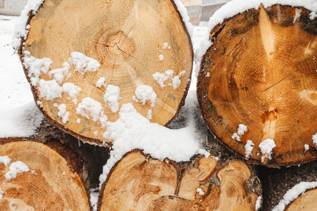wood cut: Stack of wood cut with snow background