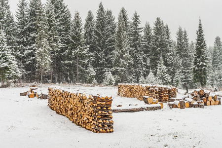 Stack of wood covered with snow in the distance photo