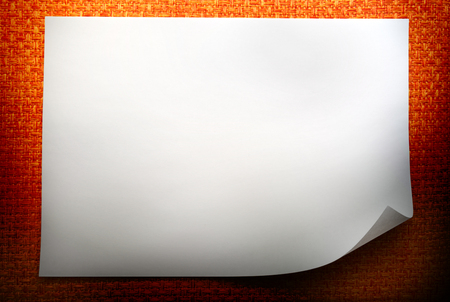 blank sheet: Hoja en blanco de papel sobre fondo naranja