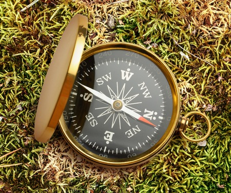 azimuth: Golden vintage compass opened on moss background