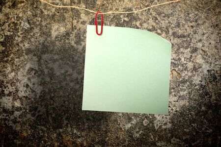 Blank green sticker and red clip on soil surface photo
