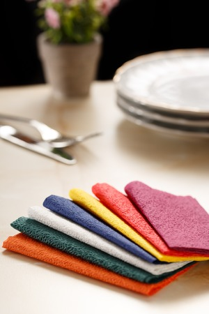 paper plates: Still life with colorful paper table napkins, flowers and plates Stock Photo