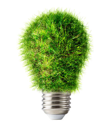 creativity: Lamp bulb made of green grass closeup Stock Photo