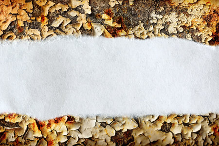 ragged: Ragged piece of paper on rusty background Stock Photo