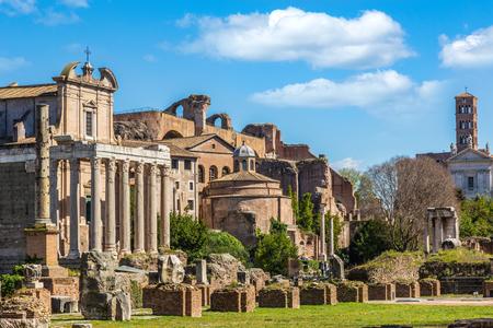 Forum Romanum w słoneczny dzień, Rzym, Włochy