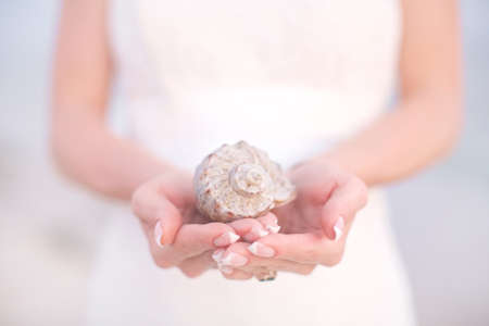 Beautiful female hands holding a large shell. Close-up