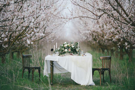Holiday table in the blossoming garden