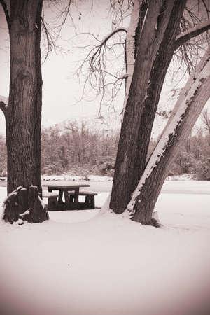 Picnic in the snow Stok Fotoğraf