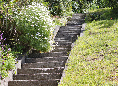 Steep concrete steps in a garden in Wellington, New Zealand. One of the pleasures of living at the top of a steep hill.