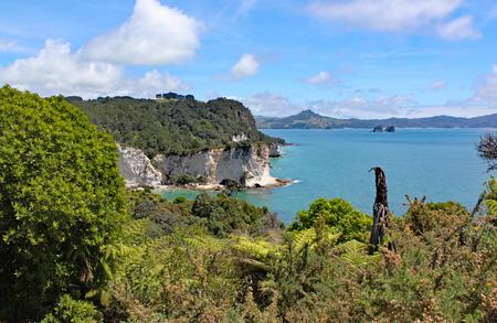 The idyllic coastline at Cathedral cove on the Coromandel Peninsular on North Island, New Zealand.