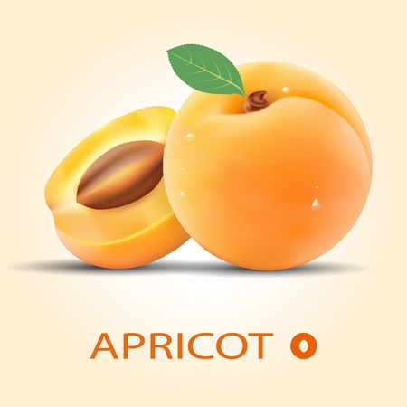 Set of the apricots.