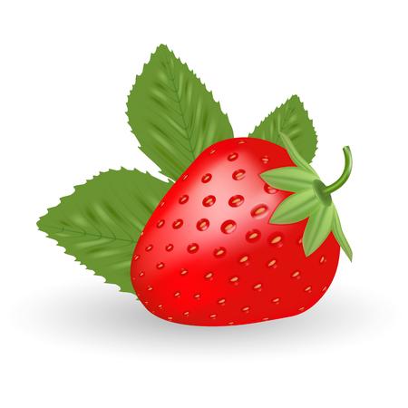 Strawberry. Sweet Fruit Isolated On A White Background.