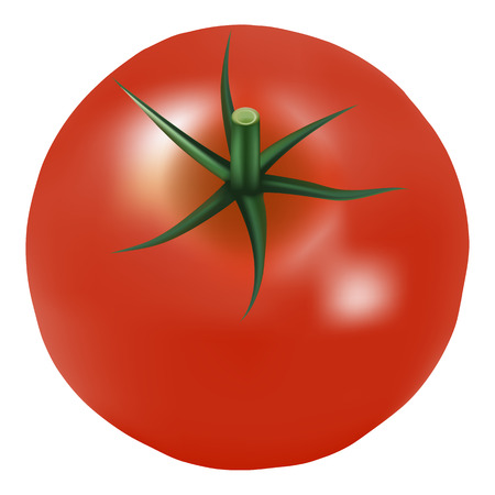 Big Ripe Red Fresh Tomato With Parsley Isolated On A White Background.