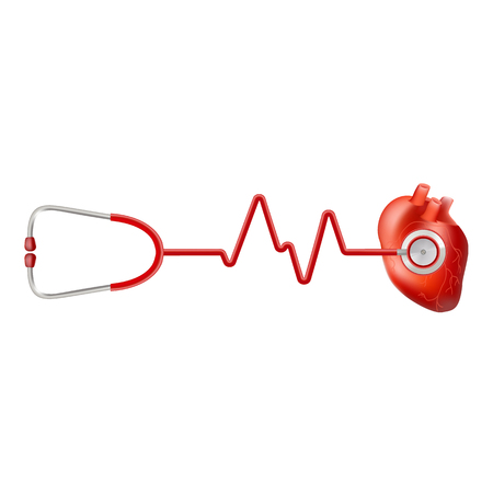 Human Heart And Heart Beat On Ekg With Stethoscope Isolated On A White Background. Realistic Vector Illustration.