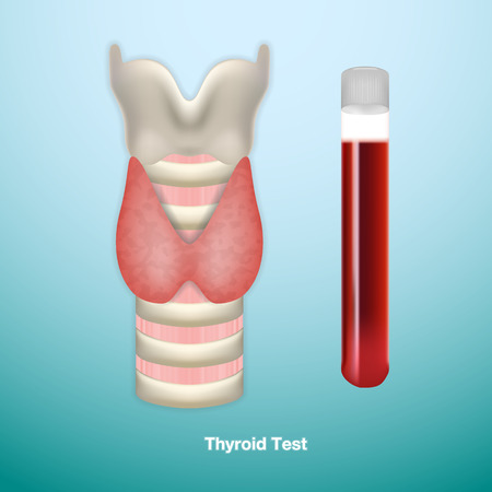 Thyroid Test. Medical Symbol Of Endocrinology System Or Hormone Secretion.