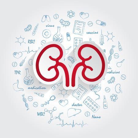 Symbole für medizinische Fachgebiete. Nephrologie und Nierenkonzept. Vektorillustration mit handgezeichnetem Medizinkritzeleien. Niere, Urin, Anatomie, Harnleiter Vektorgrafik
