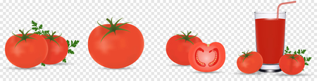 Tomato set. Detailed realistic red ripe fresh tomatoes with green leaves with water droplets isolated on transparent background. Vector 3d illustration, eps 10. Fruit and vegetable theme. Vegetarian food.